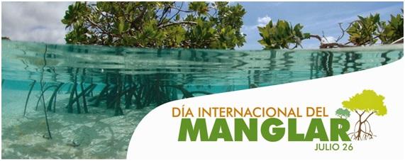 Día Internacional de la Defensa del Ecosistema Manglar – 26 de julio