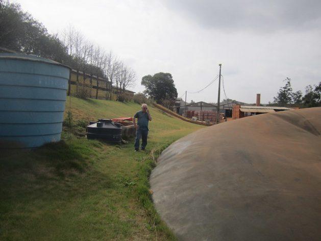 Desperdicio animal para producir energía en Brasil